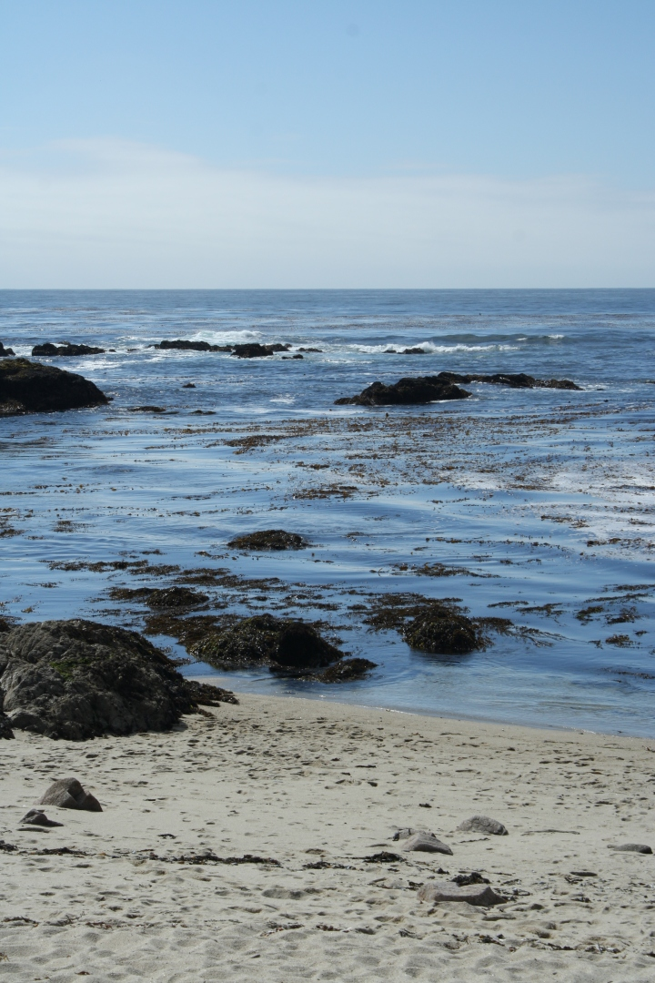 California Coast - Pure Heaven